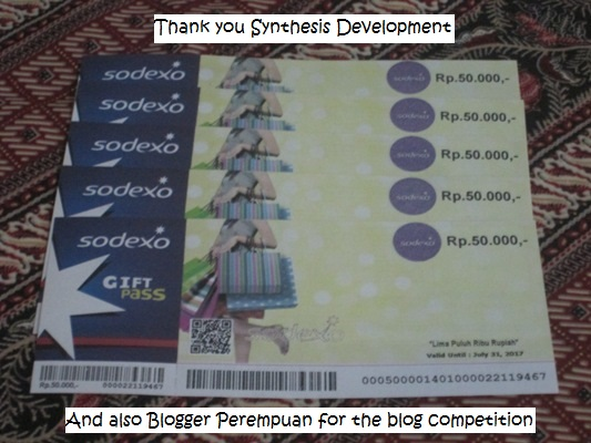 "Blog Competition ""Synthesis Development"""