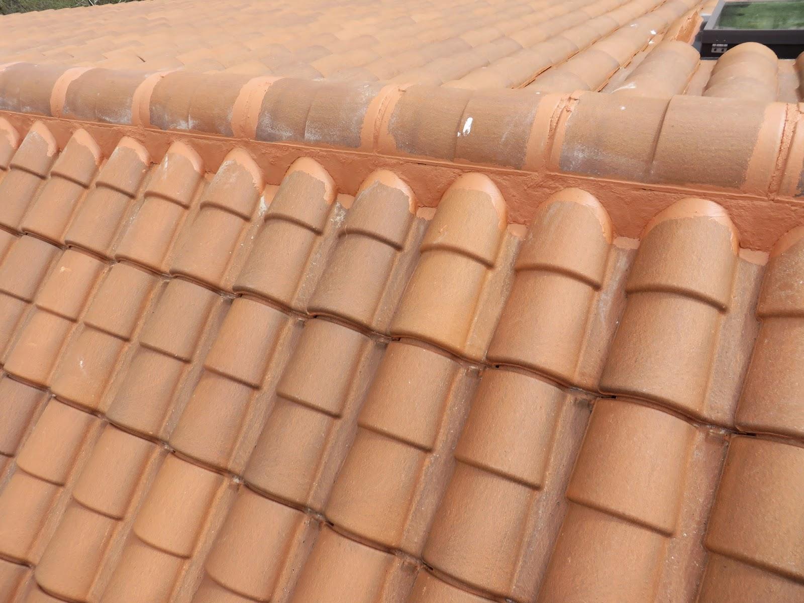 TEJADOS EMPESA DE REFORMAS EN LEÓN CUBIERTAS DE TEJA FRANCESA PRESUPUESTOS.  Reformas de tejados en León,presupuestos tlf 618848709 wasap y 987846623 atencion