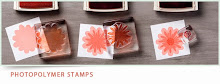 Photopolymer Stamp Sets