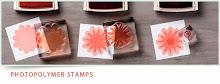 Photopolymer Stamp Sets