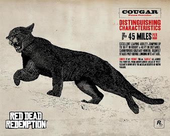 #36 Red Dead Redemption Wallpaper