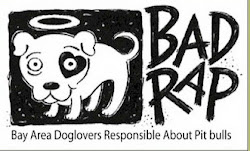 Check out badrap.org for more info and other available dogs!.