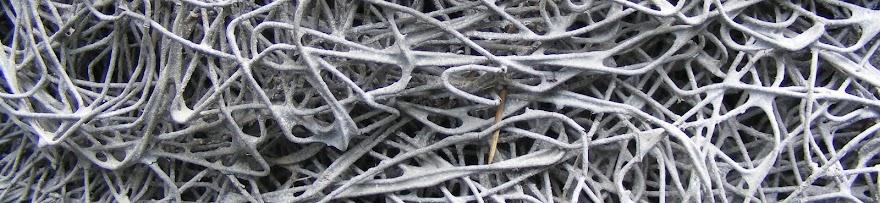 Molten Metal Flow