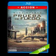 Maze Runner: Prueba de fuego (2015) BRRip 720p Audio Dual Latino-Ingles