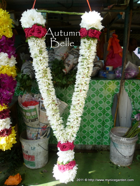This Garland Has Red Roses White Chrysanthemums Betel Leaves And Also Polianthes Rosa Flowers Bunga Sundal Malam It Is Extremely Fragrant