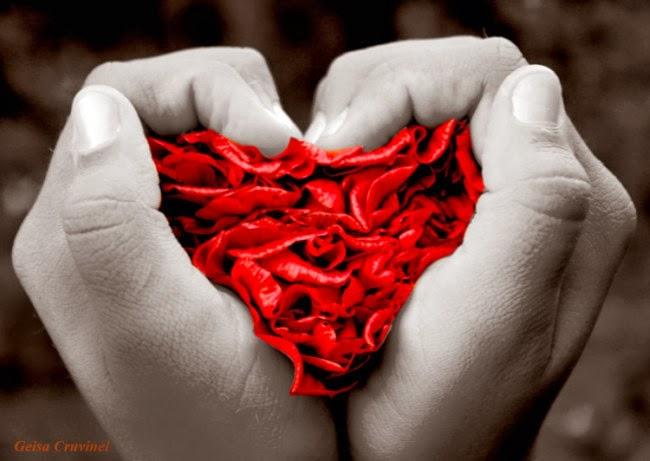 сърце от розови лисчета