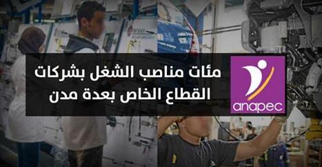 الوكالة الوطنية لإنعاش الشغل والكفاءات : مئات فرص الشغل في عدة مجالات بمؤسسات صناعية وتجارية بعدة مدن