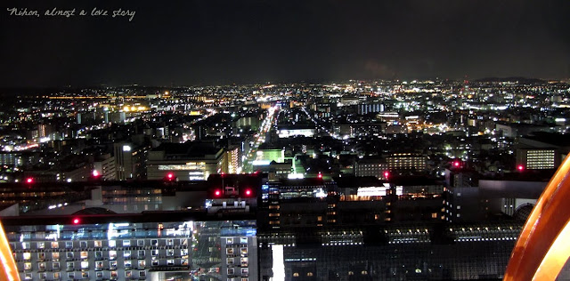 View from Kyoto tower