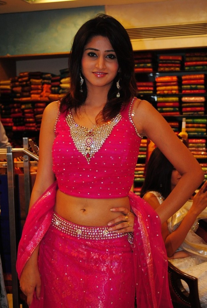 Hyderabad New Sexy Model Shamili Cute Navel Show sexy stills