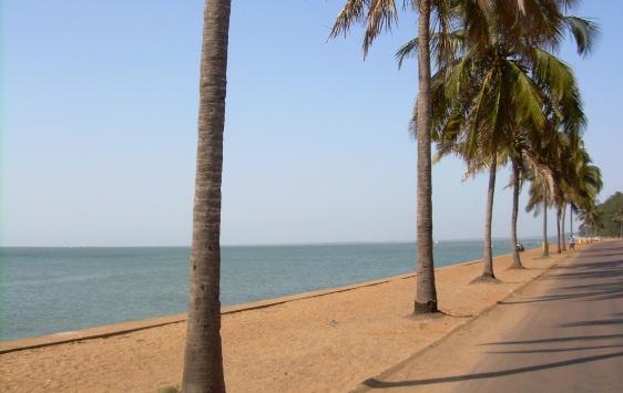 negocios em moçambique