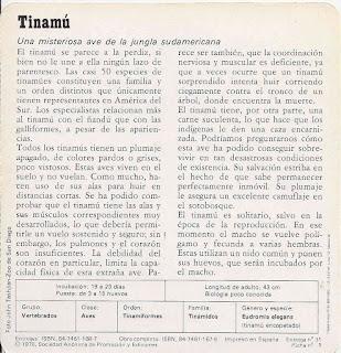 Fichas Safari Club, características de el Tinamú