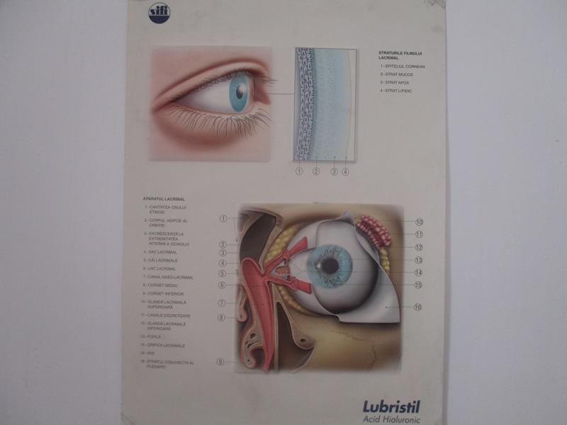 Ochiul nostru