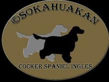 sokahuakan.blogspot.com/2014