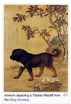 Tibetan+Mastiff.png