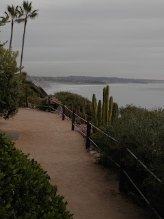 View South Towards Del Mar, Photo by Kaliani Devinne, Copyright 2013