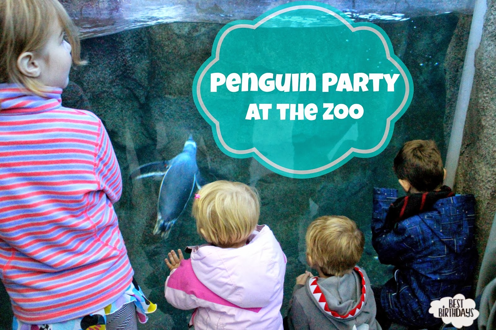 Decorating Ideas > Best Birthdays Real Party Penguin Party At The Calgary Zoo ~ 220342_Birthday Party Ideas In Calgary