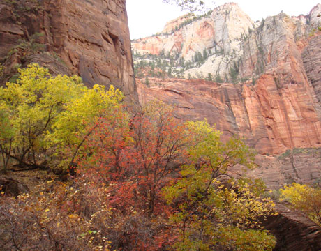Quotes About Zion National Park Quotesgram 6 Quote
