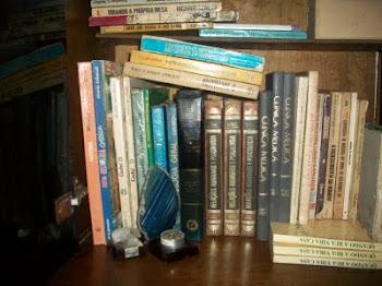 Meus livros, meus amigos...