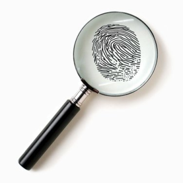 Orange County Florida Criminal Records Search : Criminal Justice Careers