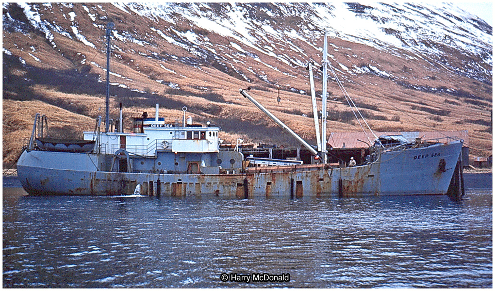 Oil electric before the deadliest catch part two saga for Deep sea fishing seattle