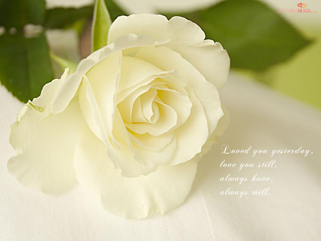 http://2.bp.blogspot.com/-S1M9ahH5Abk/TjqipfCD-MI/AAAAAAAAALI/fPgXbMyJUmA/s1600/love-wallpaper33.jpg