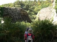Avançant entre grans roques i altes falgueres