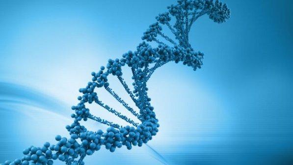 Cientistas americanos descobrem falha genética, que altera o sistema imunológico, causando alergias.