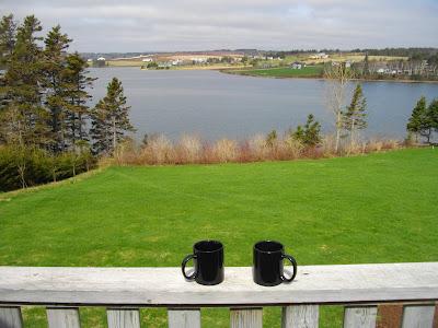 Luxury Villa View