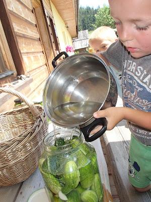 Orawa, Babia Góra, Lipnica Wielka, przetwory z ogórków, ogórki małosolne, ogórki w zalewie octowej, dzieci robia przetwory