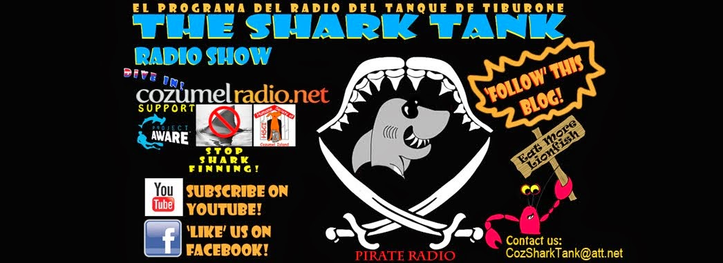 The Shark Tank radio show