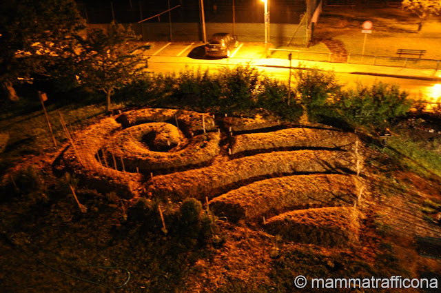 synergic garden by night agricoltura naturale