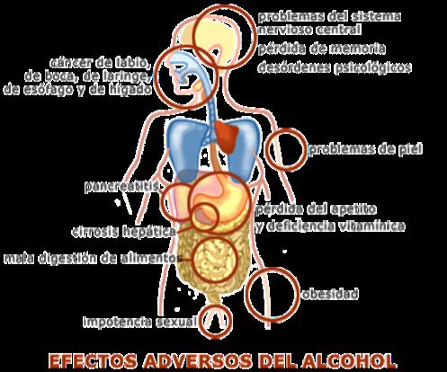 Los medios eficaces medicinales del alcoholismo