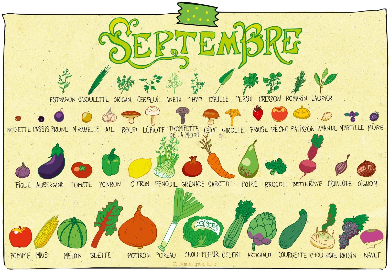 Septembre calendrier des fruits et l gumes pissenlit - Legumes de saison decembre ...