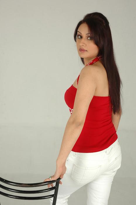 sonia agarwal sizzling shoot hot photoshoot