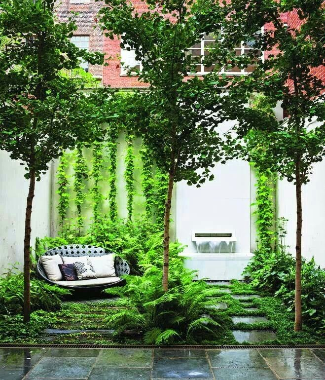 Style and design miniature exotic gardens 10 inspiring for Garden city trees