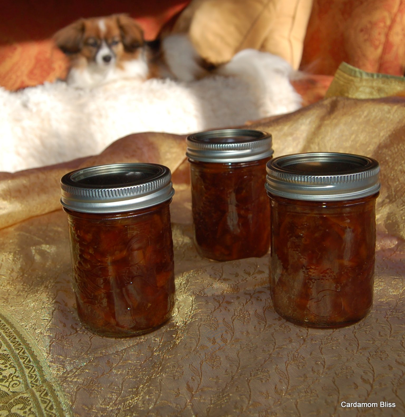 Marmalade Papillon supervising making Seville Orange Marmalade