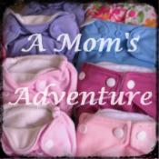 A Mom's Adventure