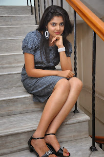 Shravya  Pictures at Bhadram Movie Audio Launch    ~ Bollywood and South Indian Cinema Actress Exclusive Picture Galleries