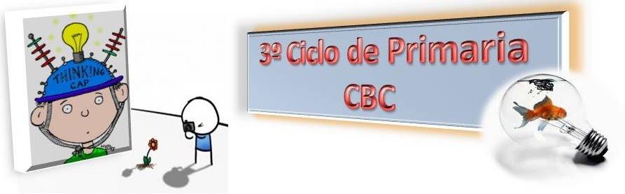 3º ciclo de primaria cbc