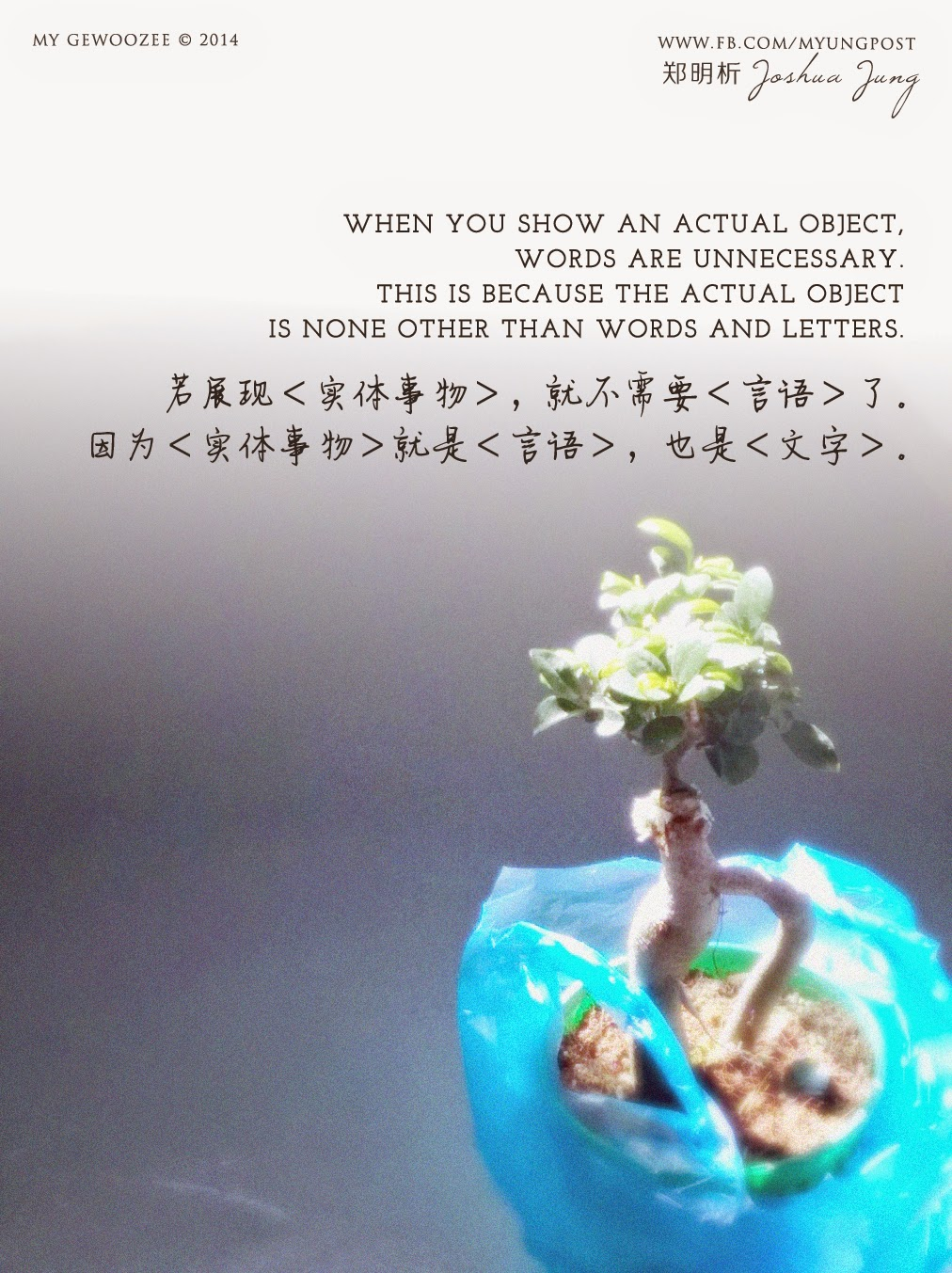 郑明析,摄理,月明洞,盆栽,光,言语,文字,事物,Joshua Jung, Providence, Wolmyeong Dong, Light, words, letters, object, bonsai
