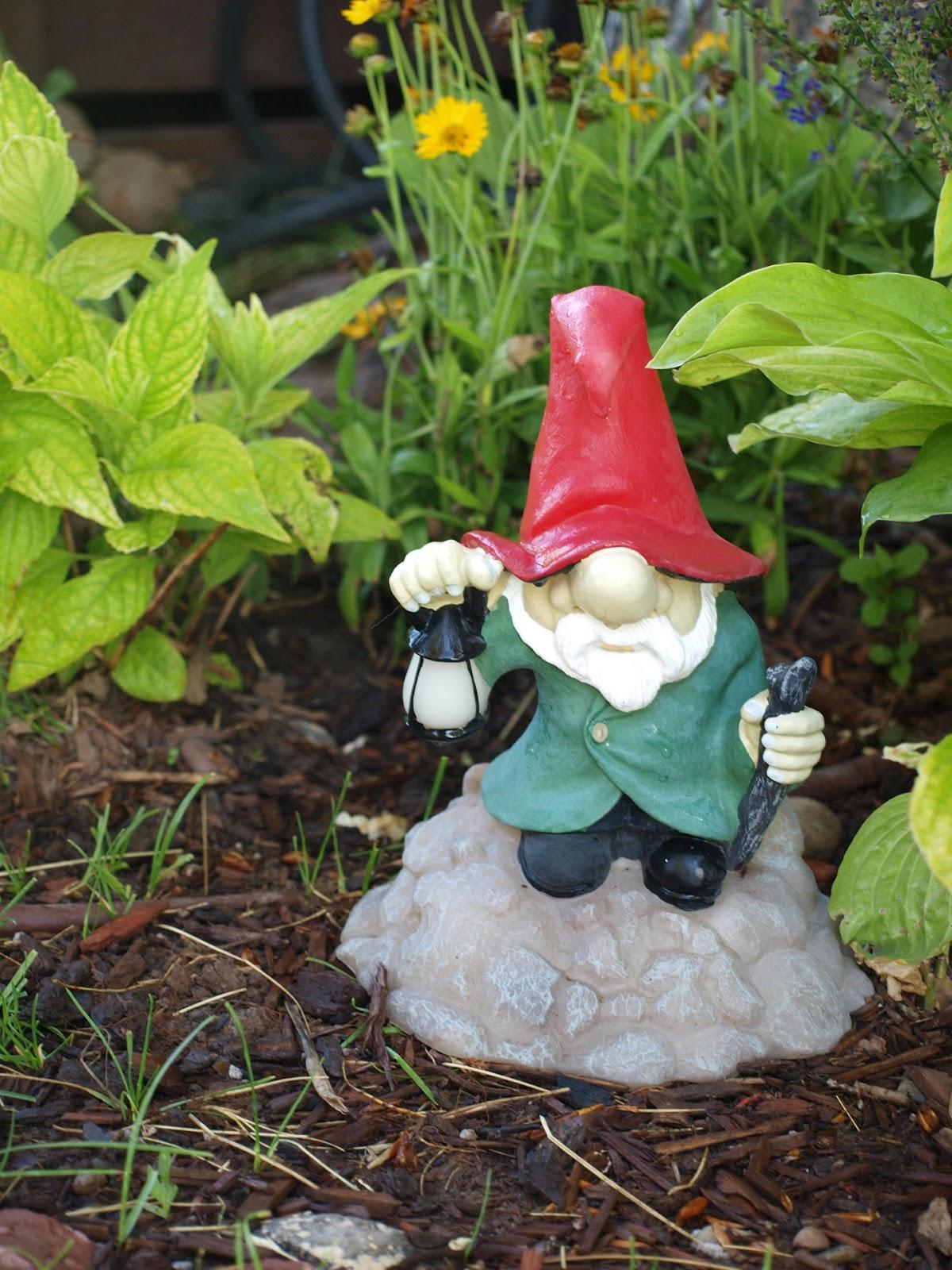 garden gnome by aubrey kirkham