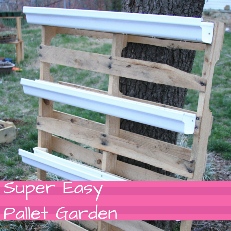 Super Easy Herb Garden