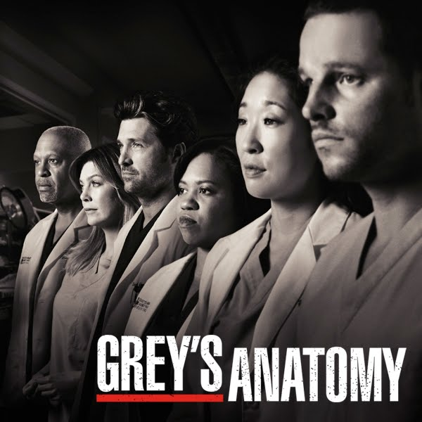 Grey's Anatomy, Season 7 (Official Tv Show Cover)