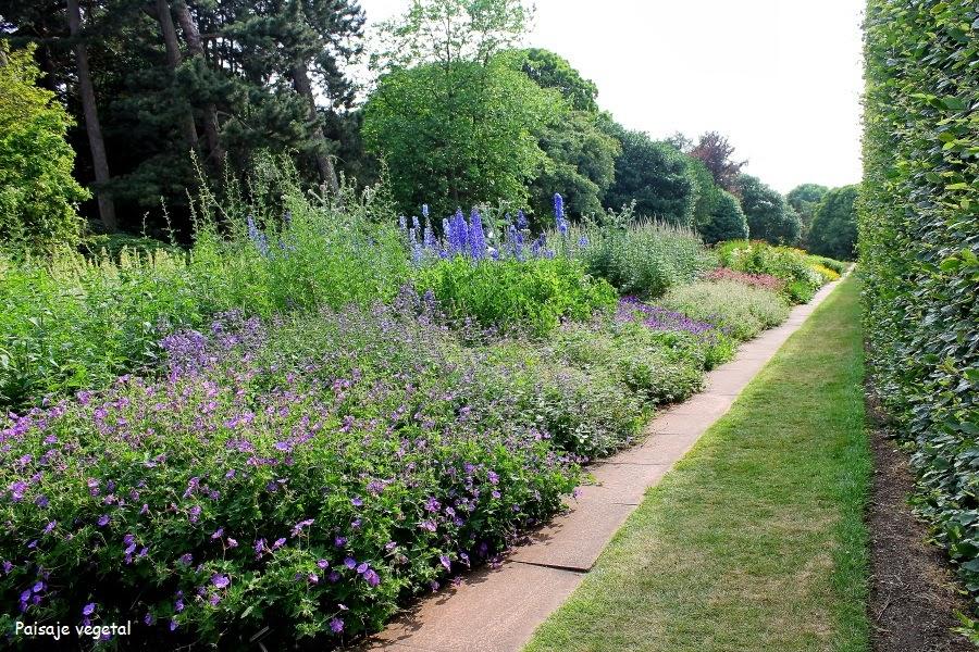 Paisaje vegetal escocia edimburgo iii new town for Jardin botanico edimburgo