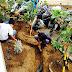 Lomba Hias Taman Kelas MAN Surabaya