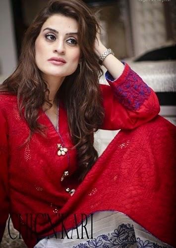 Chic'n'Kari Lucknowi Chiffon Suits 2014-15