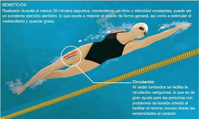 La natación y sus beneficios para la circulación