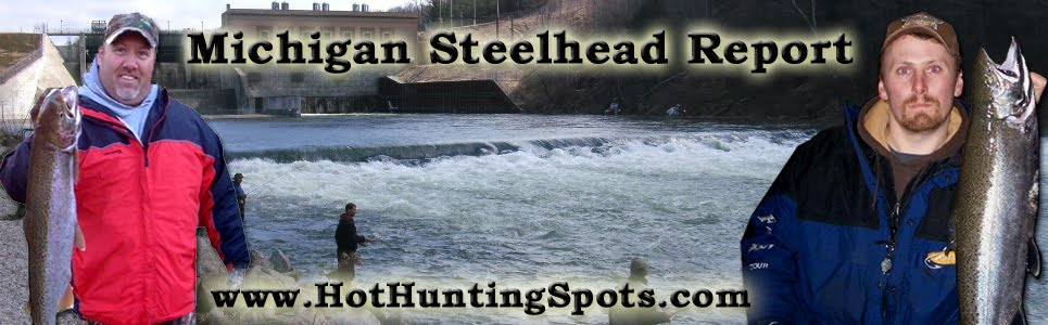 Michigan Steelhead Report