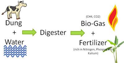 Contoh Produk Bioteknologi dalam Bidang Industri, Kesehatan (Kedokteran) dan Pertambangan