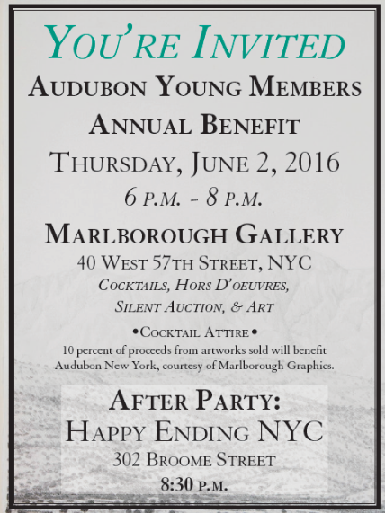 SAVE THE DATE: AUDUBON YOUNG MEMBERS BENEFIT